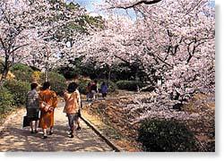 皇后崎公園 - 北九州市